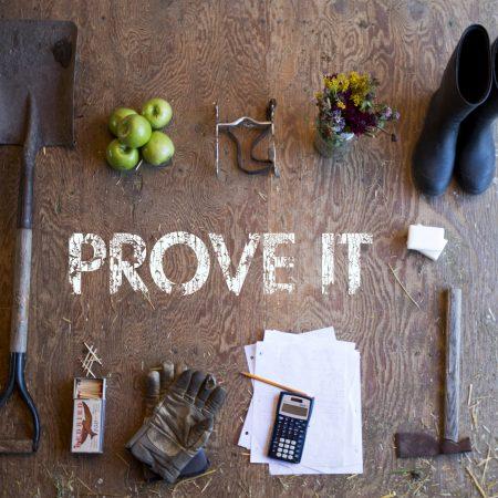 Prove It: Proving Our Treasure